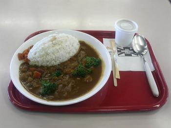 hakonenoyasai curry.JPG